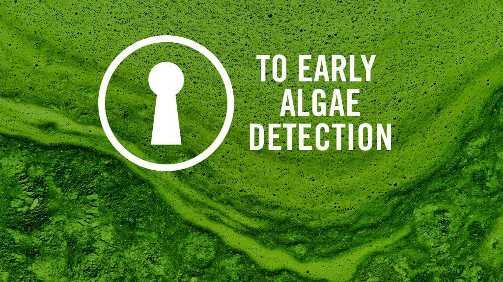 CONTINUOUS MONITORING KEY TO EARLY ALGAE DETECTION