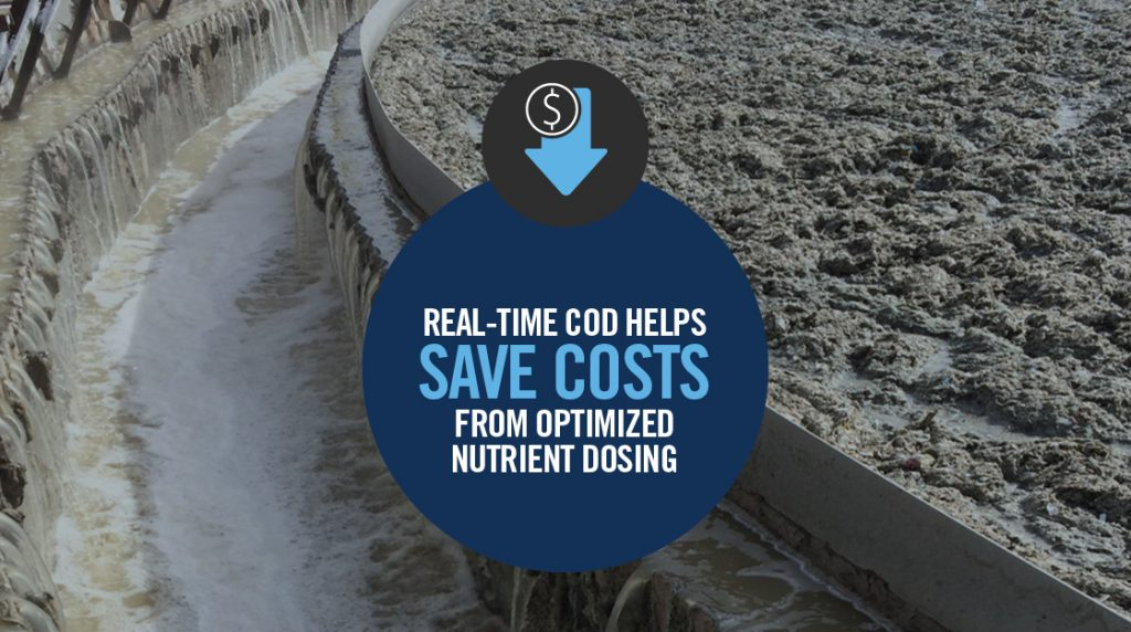CASE STUDY: REAL-TIME COD HELPS SAVE COSTS FROM OPTIMIZED NUTRIENT DOSING
